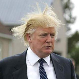 trump-hair5